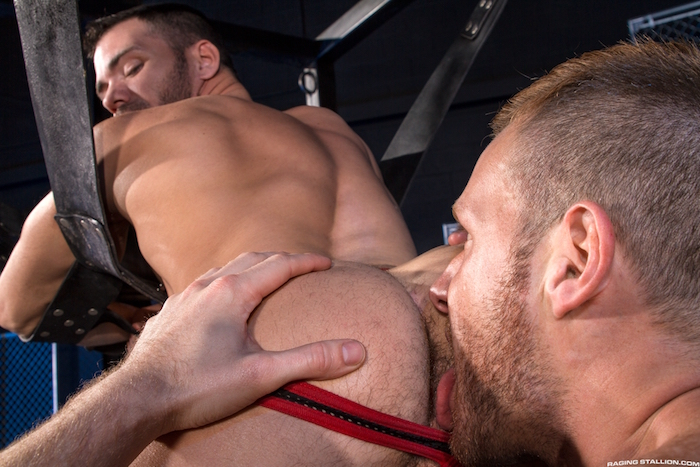 primal-brian-bonds-brogan-reed-3